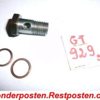 Hatz Motor 2L30 S 2L 30 S Teile: Schraube Dieselschlauch Einspritzpumpe GT929S